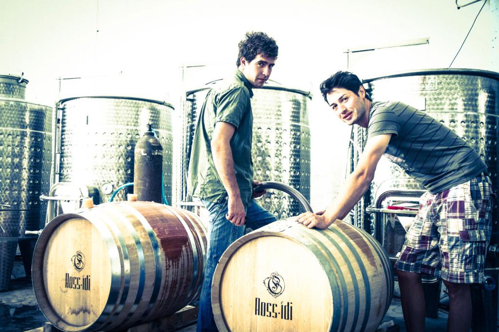 barrelling-at-rossidi-winery